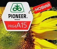 Семена подсолнечника ПР64А15 Пионер (PR64A15 Pioneer)