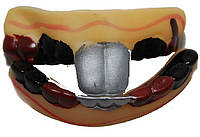 Зубы зайца с кариесом 090316-027