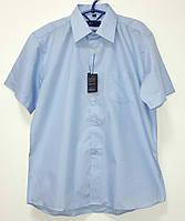 Рубашка школьная мальчик голубая короткий рукав