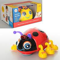 Детская музыкальная игрушка Жук 82721 ABCD,  микс видов
