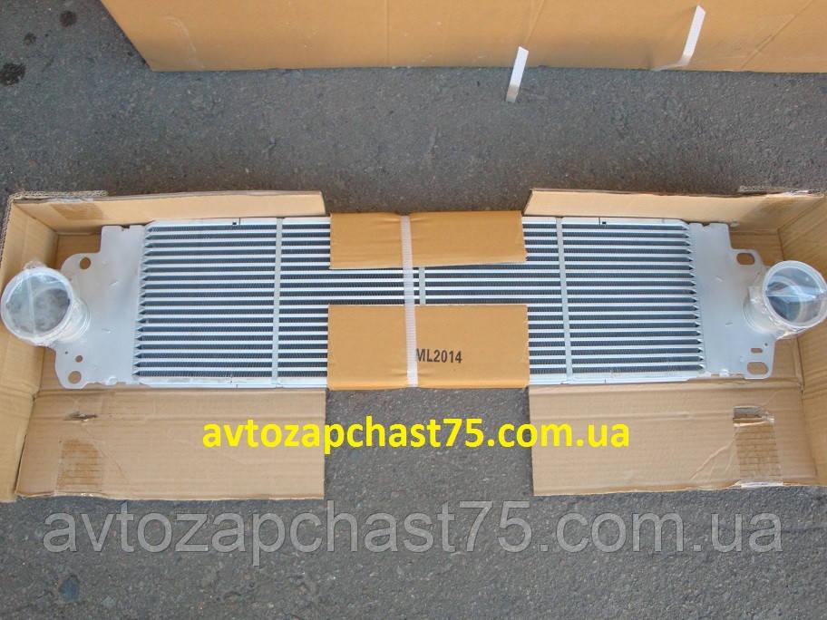 Радиатор интеркулера Volkswagen Transporter T5 с 2003 года (производство Tempest, Тайвань)