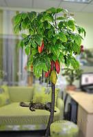 Искусственное дерево Какао с плодами 190 см