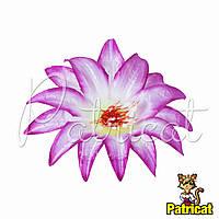 Цветы Крокус Розовый из ткани 13 см 1 шт