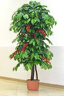 Искусственное Кофейное дерево с плодами 160 см