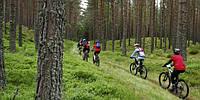 «Ничто не может сравниться с простым удовольствием прогулки на велосипеде». Джон Кеннеди