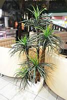 Искусственное растение Юкка 170 см