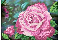 """Схема для вышивки бисером """"Королева сада розовая"""""""