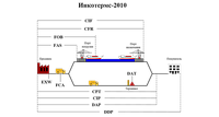 Способи доставки вантажів Інкотермс 2010