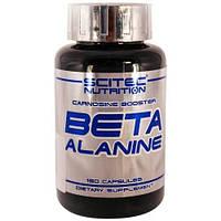 Аминокислота Beta Alanine (150 caps) Scitec Nutrition
