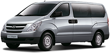 Кенгурятники на Hyundai H-1 (c 2008--)