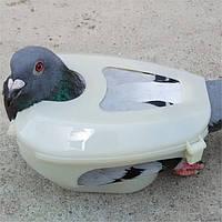 Держатель-фиксатор для голубей