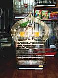 Клетка для птиц 46,5*36*88см, фото 4