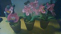Орхидея декоративная в горшочке