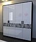 Шкаф 4Д Терра Миро Марк, фото 2
