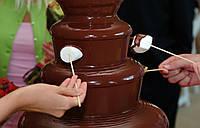 Шоколадный фонтан. Прокат шоколадного фонтана