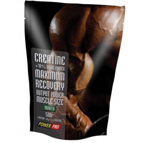 POWER PRO CREATINE 500G
