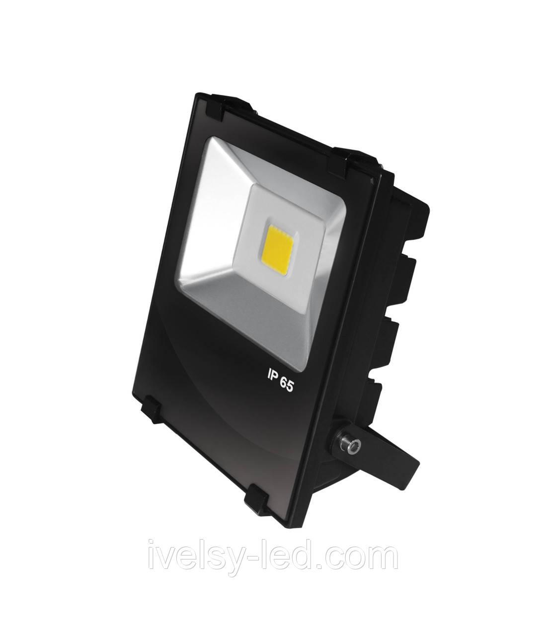 Прожектор LED EUROELECTRIC COB чорний з радіатором 30W 6500K modern