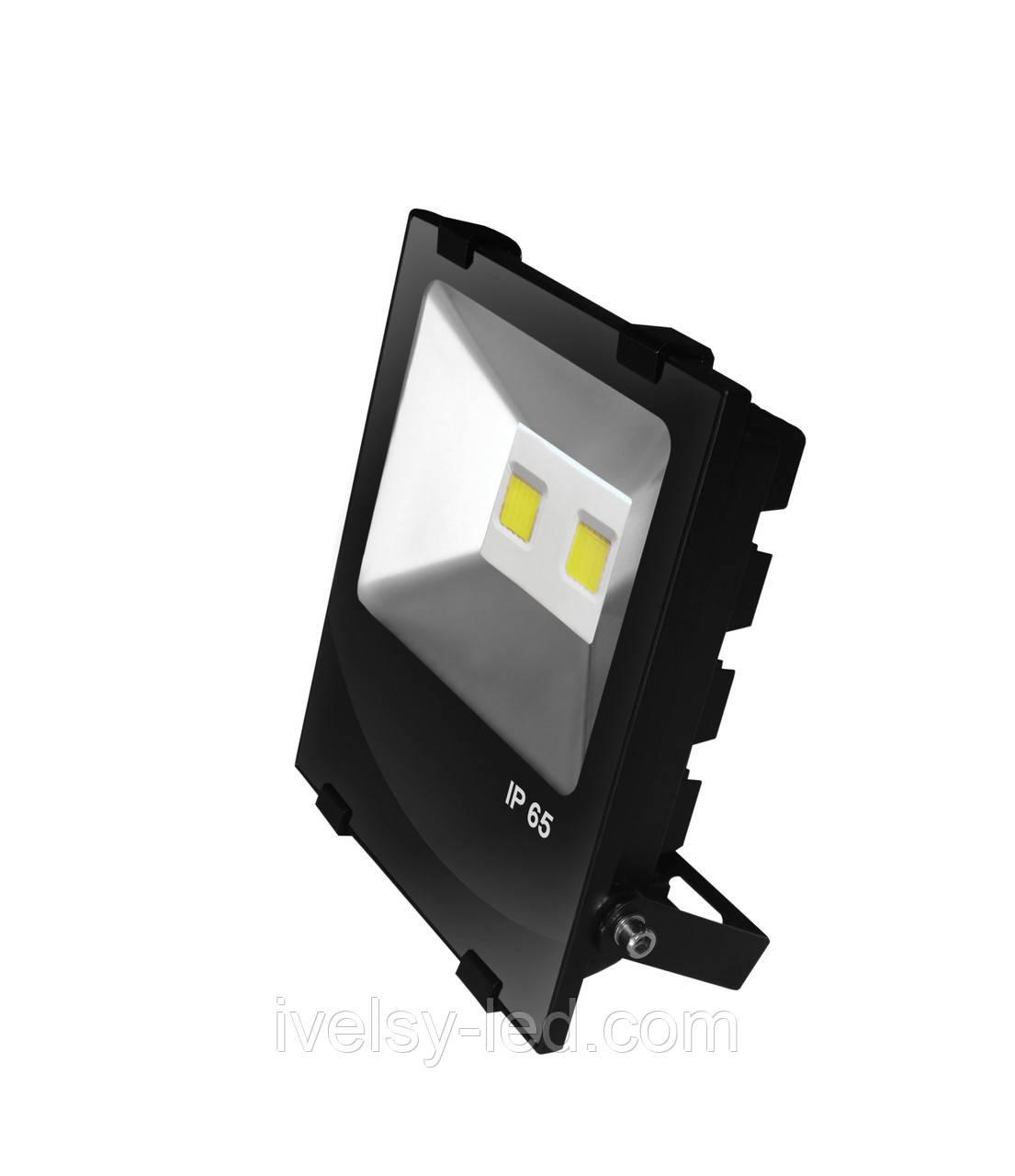 Прожектор LED EUROELECTRIC COB чорний з радіатором 100W 6500K modern