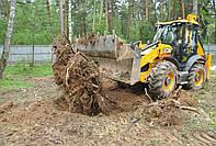 Спил деревьев и корчевание пней в Харькове и области