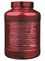 Говяжий протеин  100% Beef Concentrate (2 kg) Scitec