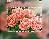 """Схема вышивки для начинающих на подрамнике (холст) """"Букет коралловых роз"""""""