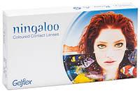 Цветные линзы Ningaloo (2 шт.)