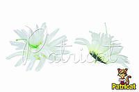Цветы Астра Белая из ткани 11 см 1 шт