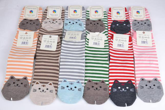 Женские носки Кошечки (SL6109) | 12 пар, фото 2