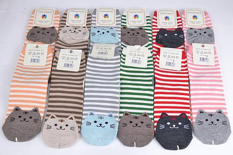 Женские носки Кошечки (SL6109)   12 пар, фото 2