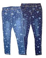 Лосины для девочки под джинс, Grace, размеры 140  арт. G-60594