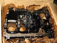 Блок цилиндров (11193-100201100) ВАЗ-11193 (16-ти клап.) (пр-во АвтоВАЗ)
