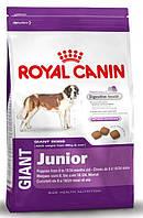 Корм для молодых собак гигантских пород Royal Canin Giant Junior