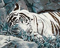"""Набор для рисования по цифрам """"Белый тигр"""" 40*50см"""