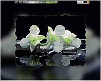 """Схема для вышивки бисером на подрамнике (холст) """"Белая орхидея"""""""