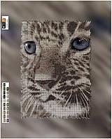 """Схема для вышивки бисером на подрамнике (холст) """"Взгляд леопарда"""""""