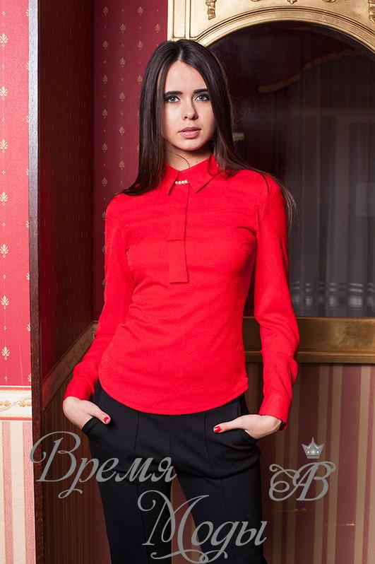 Красная блузка рубашка купить