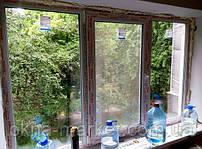 """Трёхстворчатые окна WDS Olimpia с одной открывающейся створкой - фирма оконная """"Окна Маркет"""""""
