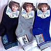Носки на мальчика «Малыш» 33-36, 36-39