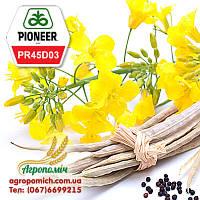 Семена Рапса ПР45Д03 Пионер (PR45D03 Pioneer)