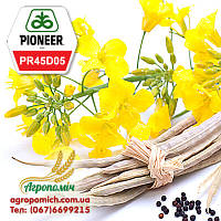 Семена Рапса ПР45Д05 Пионер (PR45D05 Pioneer)
