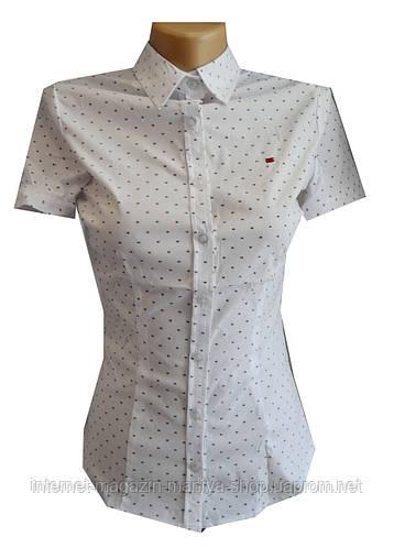 Блузка женская, короткий рукав,принт