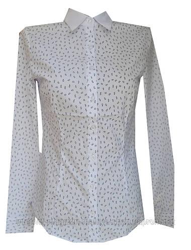 Блузка женская длинный рукав, принт