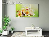 Модульная картина Фотокартина Весенние цветы на ткани 90х150 см, арт. FA-10 001484