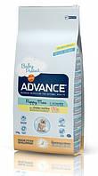 Корм ADVANCE (Эдванс) Dog Maxi Junior для молодих собак крупных пород, 15 кг