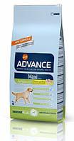 Корм ADVANCE (Эдванс) Dog Maxi Junior для молодых собак крупных пород,15 кг