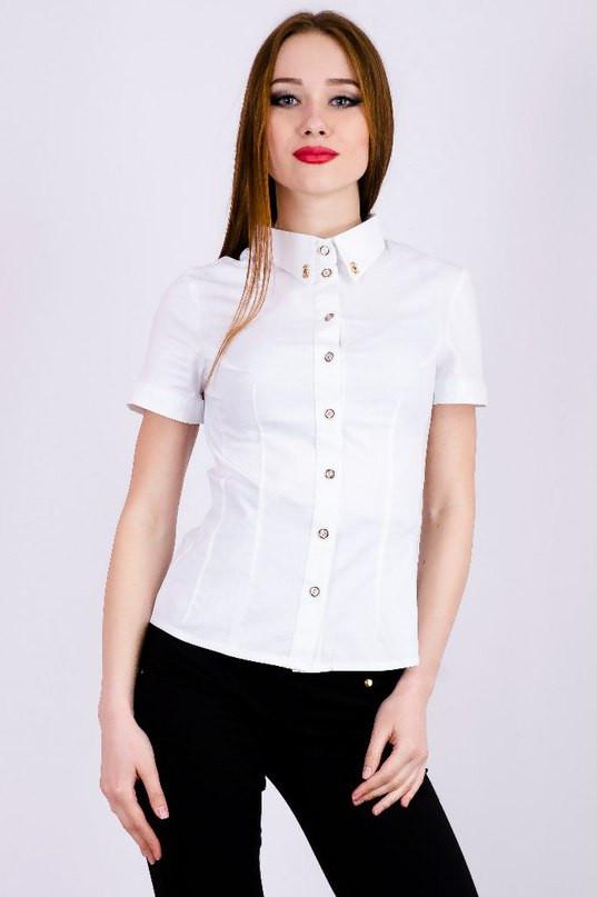 42366c674ae Для женского гардероба обязательна стильная блуза или туника с цветочным  принтом или кружевными вставками. А можно рискнуть и сыграть на модном  контрасте