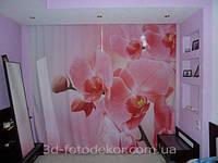 """Фото штора """"Розовая орхидея"""". Материал габардин."""