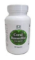 Корал Босвеллия (Coral Boswellia) укрепляет структуру хрящей.№90