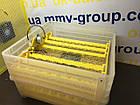 Инкубатор бытовой HHD 96 автомат +12 в резервное питание, фото 4