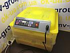 Инкубатор бытовой HHD 96 автомат , фото 6